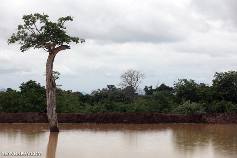 Lake in Yala NP