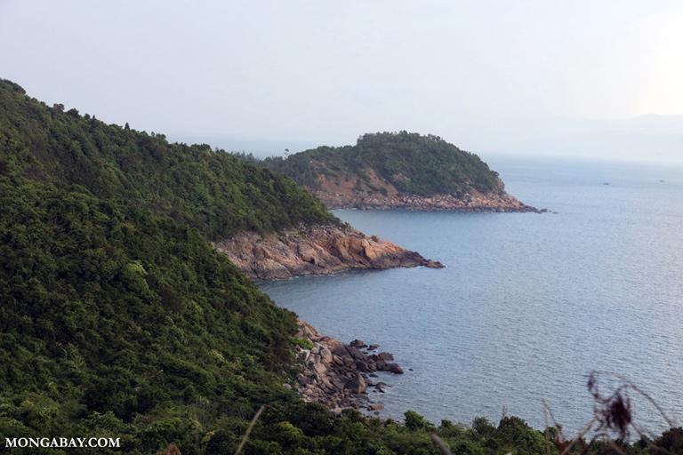 Son Tra coastline