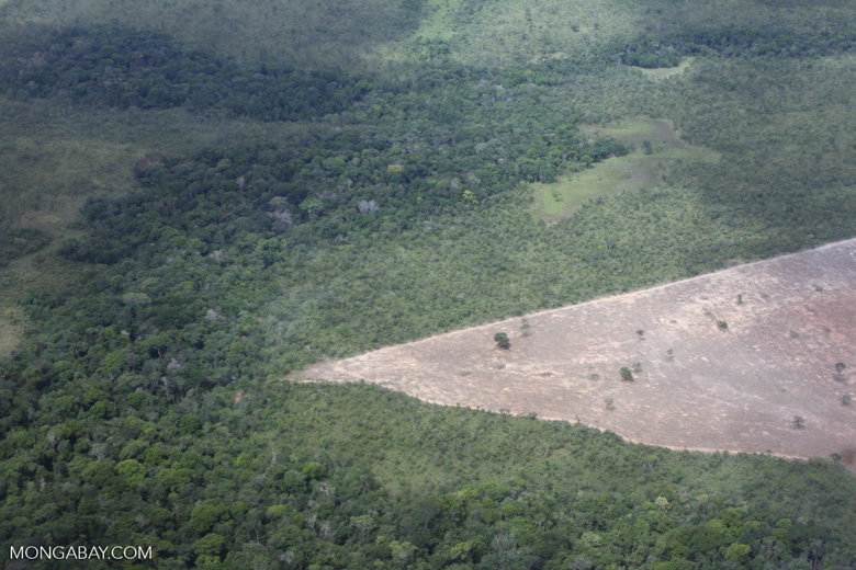 Conversion of transition forest in the Brazilian Amazon [brasil_027]