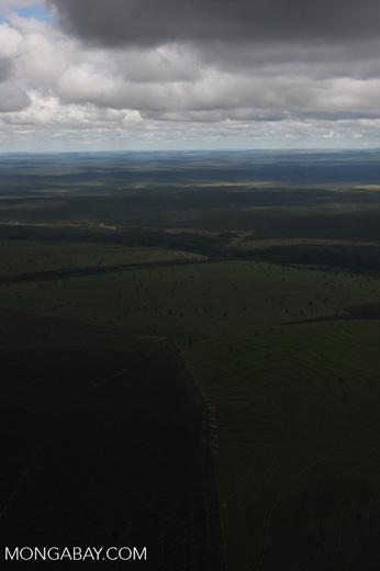Recently cleared cerrado in Brazil [brasil_044]