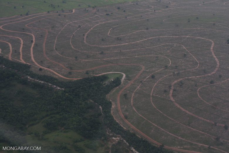 Recently cleared cerrado in Brazil [brasil_052]