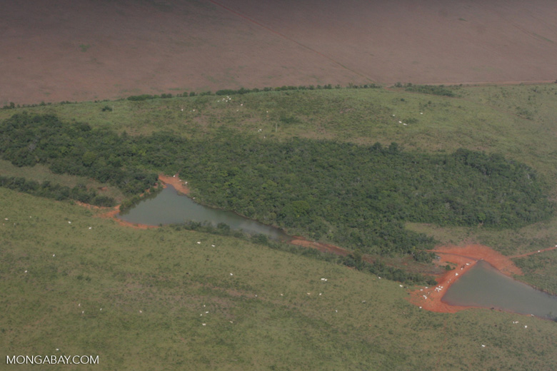 Water catchments for cattle in the Xingu watershed [brasil_075]