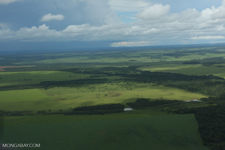 Matrix of soy fields, forest reserves, and cattle pasture in the Brazilian Amazon