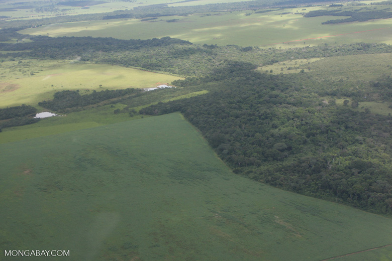 Matrix of soy fields, forest reserves, and cattle pasture in the Brazilian Amazon [brasil_100]