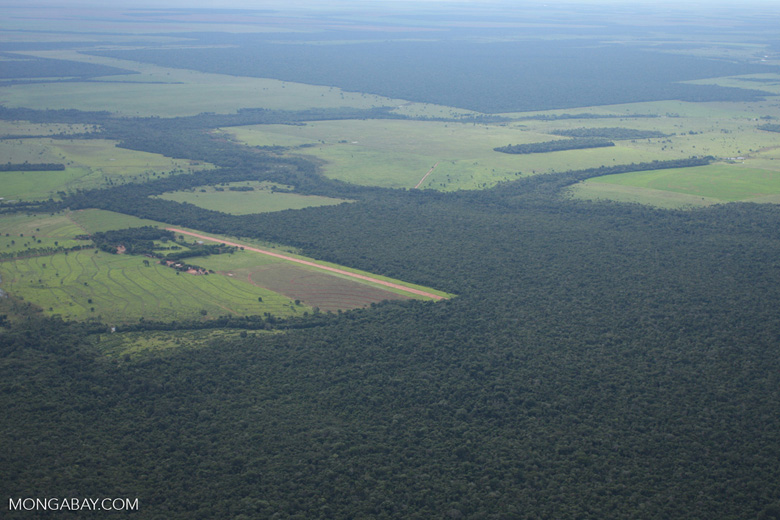 Clearing of Amazon forest for pasture or soy [brasil_125]