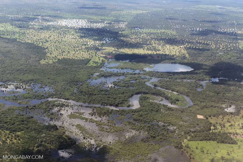 Airplane view of the Pantanal