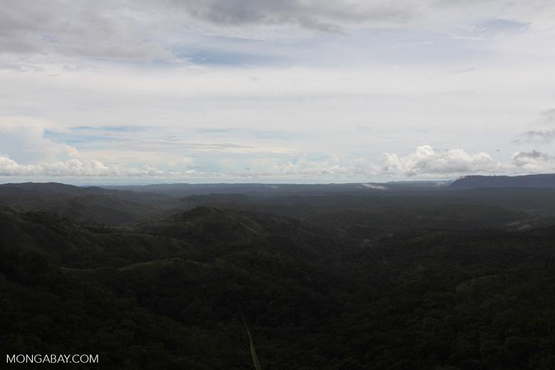 Cerrado seen from Chapada [brazil_0015]