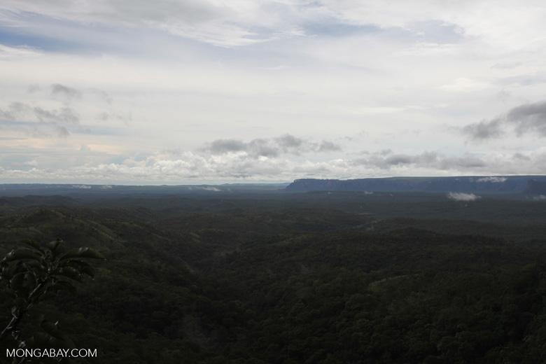 Cerrado seen from Chapada [brazil_0020]