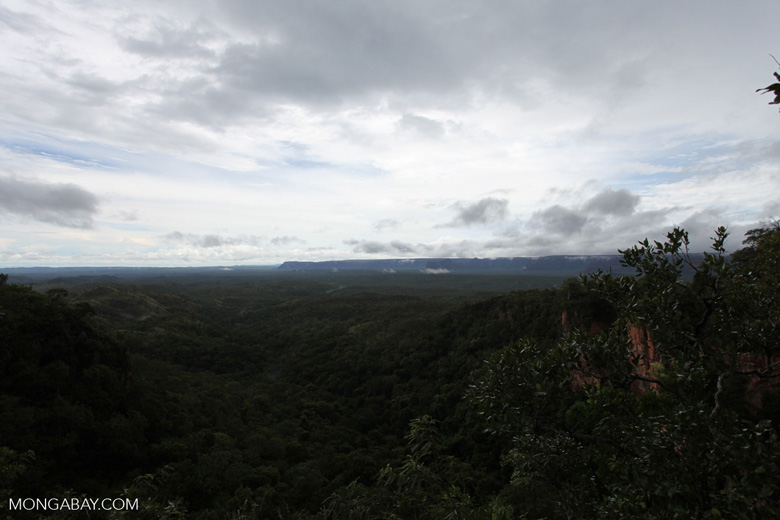 Cerrado seen from Chapada