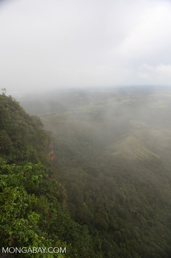 Forested cliffs at Chapada (through the mist) [brazil_0035]