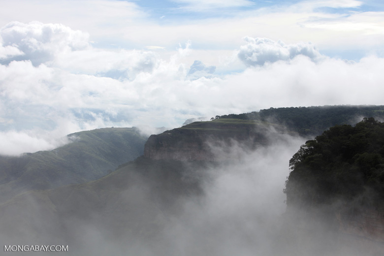 Plateau in Chapada