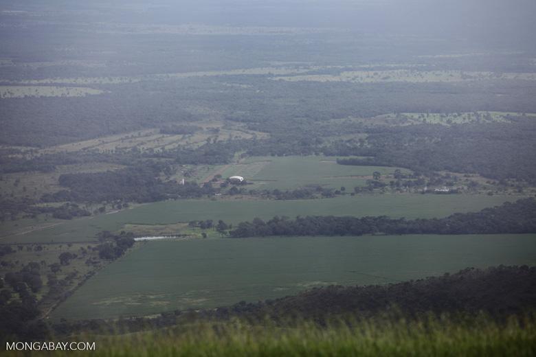 Soy fields near Chapada