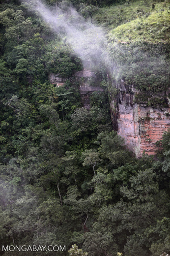 Forested cliffs at Chapada