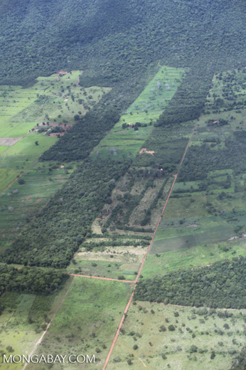 Agricultural clearing and forest reserves in the southern Amazon [brazil_0195]