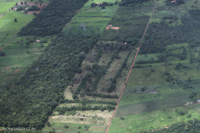 Agricultural clearing and forest reserves in the southern Amazon [brazil_0196]