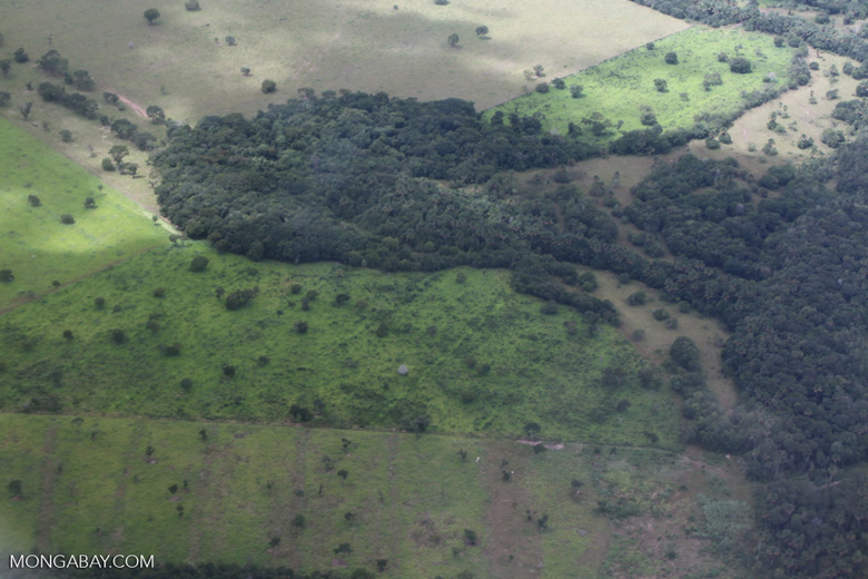 Agricultural clearing and forest reserves in the southern Amazon [brazil_0201]