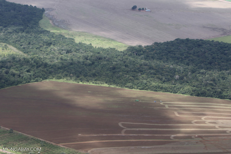 Aerial view of new cerrado/transition forest clearing [brazil_0206]