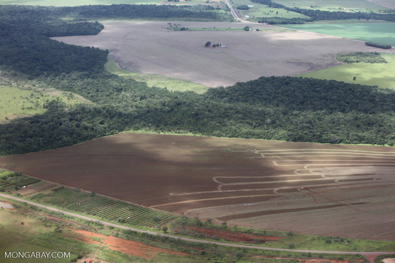 Aerial view of new cerrado/transition forest clearing [brazil_0207]