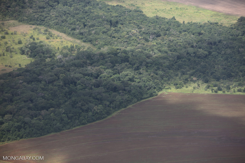 Aerial view of new cerrado/transition forest clearing [brazil_0209]