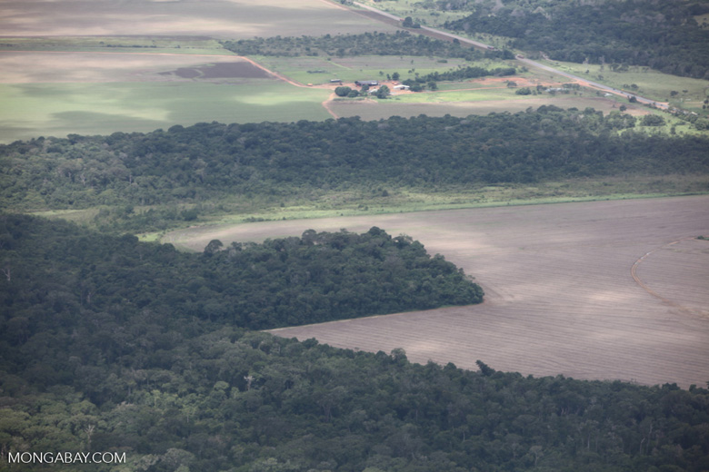 Forest clearing for soy in the southern Amazon of Mato Grosso state, Brazil [brazil_0211]