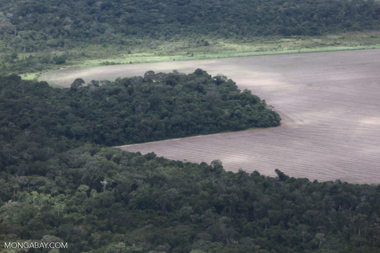 Forest clearing for soy in the southern Amazon of Mato Grosso state, Brazil