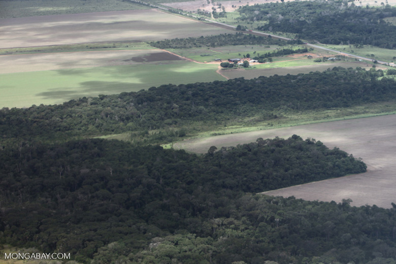 Forest clearing for soy in the southern Amazon of Mato Grosso state, Brazil [brazil_0215]