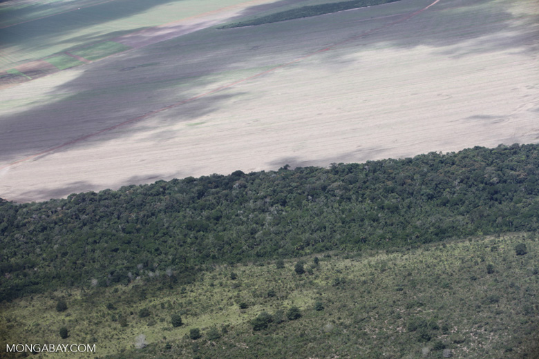 Cerrado clearing for soy agriculture in the southern Amazon of Mato Grosso state, Brazil [brazil_0217]