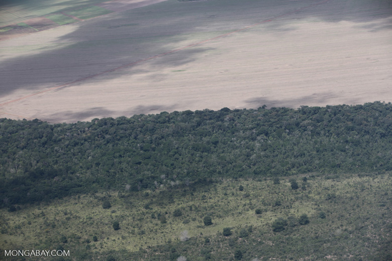 Cerrado clearing for soy agriculture in the southern Amazon of Mato Grosso state, Brazil