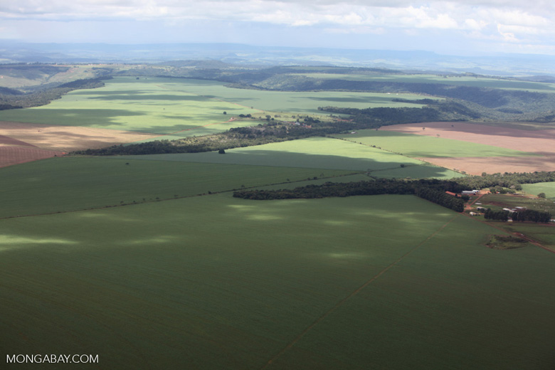 Aerial view of extensive soy fields and legal forest reserves in the Brazilian Amazon