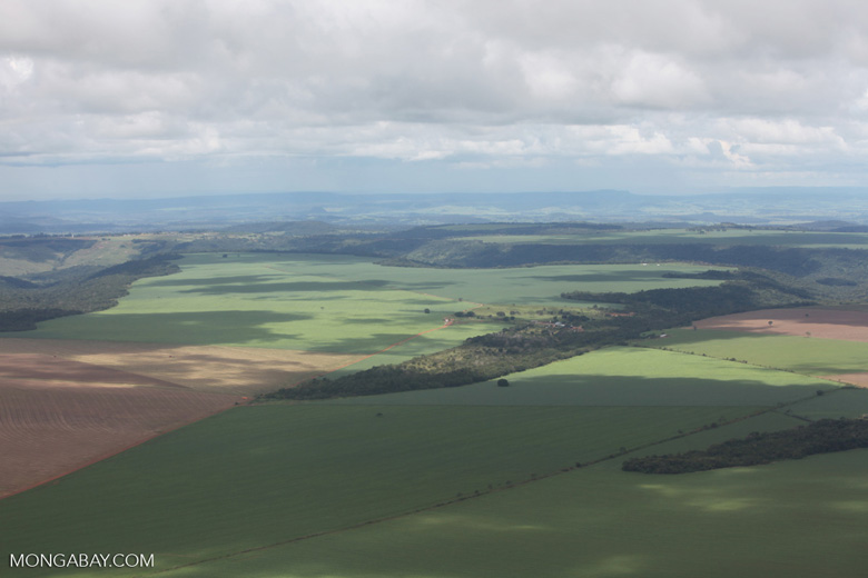 Aerial view of extensive soy fields and legal forest reserves in the Brazilian Amazon [brazil_0245]