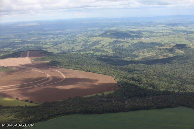 Extensive forest and cerrado clearing in the southern Amazon for cattle pasture and soy agriculture [brazil_0259]