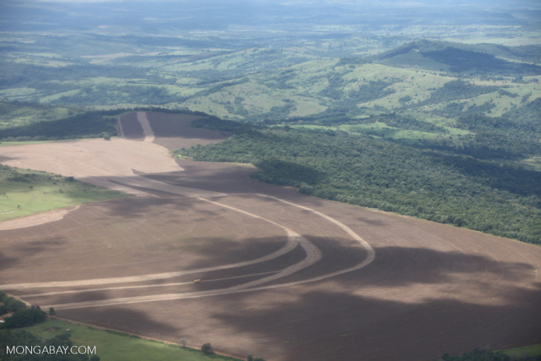 Extensive forest and cerrado clearing in the southern Amazon for cattle pasture and soy agriculture