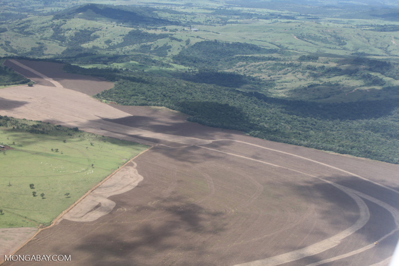 Land newly tilled for soy in the southern Amazon