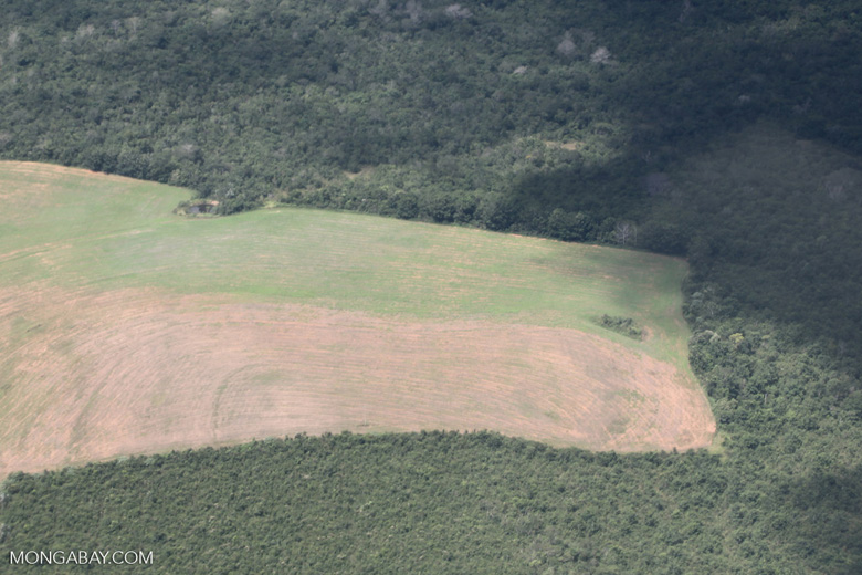 Airplane view of land cleared in the Amazon for agriculture