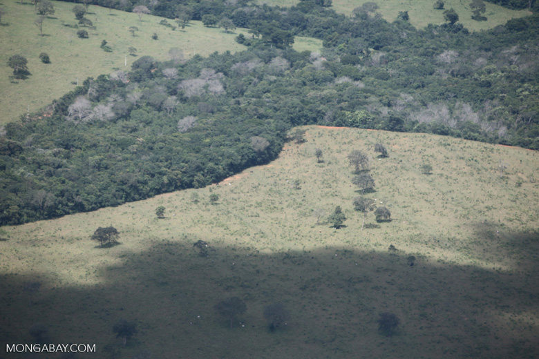 Overhead view of land cleared in the Amazon for agriculture [brazil_0286]
