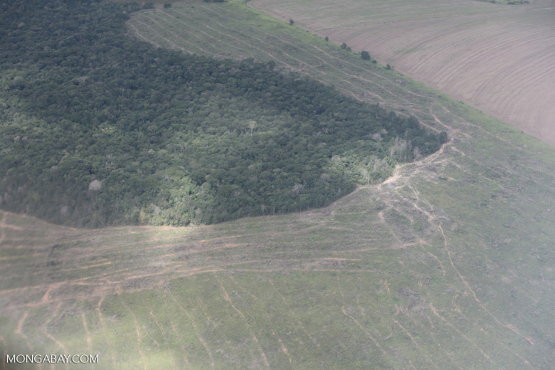 Newly cleared land next to a forest reserve