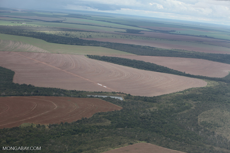 Newly tilled land and forest in the Amazon