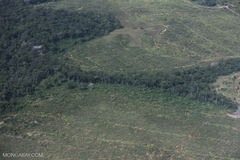 Riparian forest and cleared cerrado [brazil_0433]