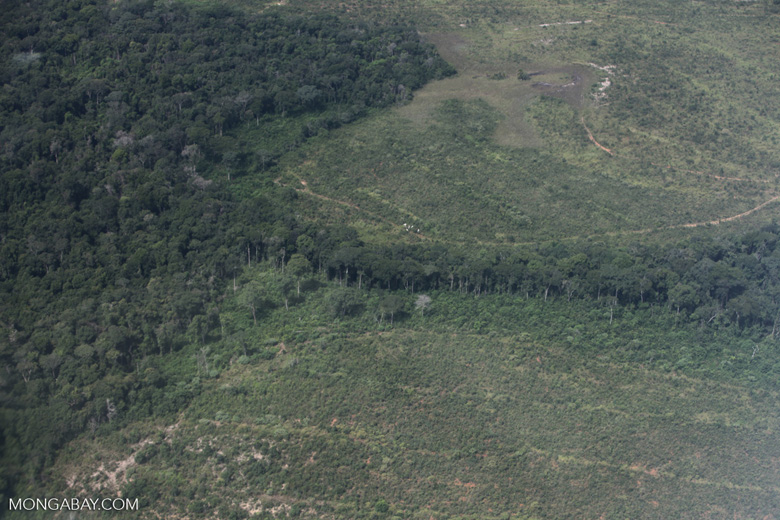 Riparian forest and cleared cerrado