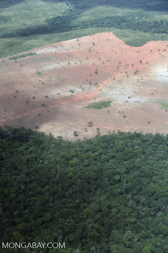 Cleared forest in the Brazilian Amazon