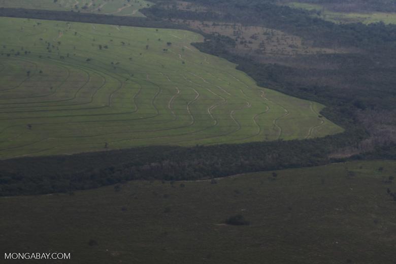 Cerrado, transition forest, and pasture [brazil_0456]