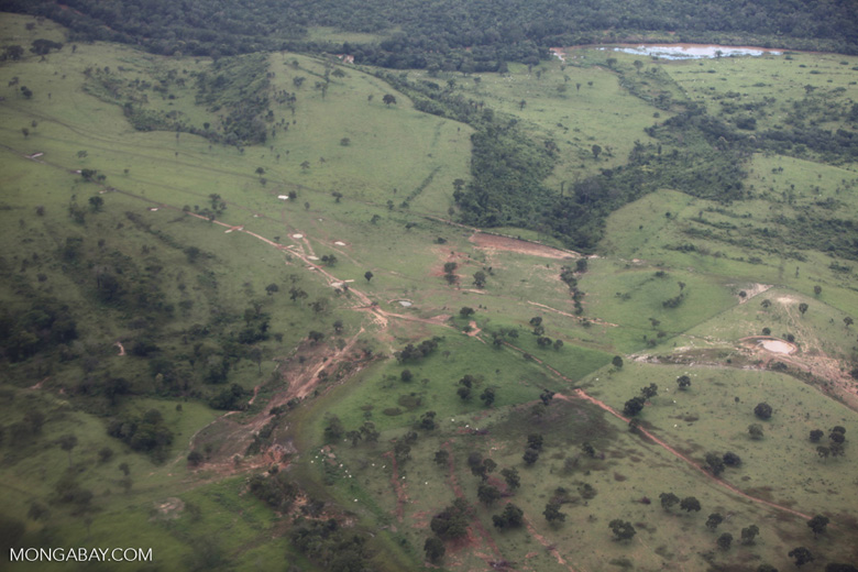 Pasture and degraded forest