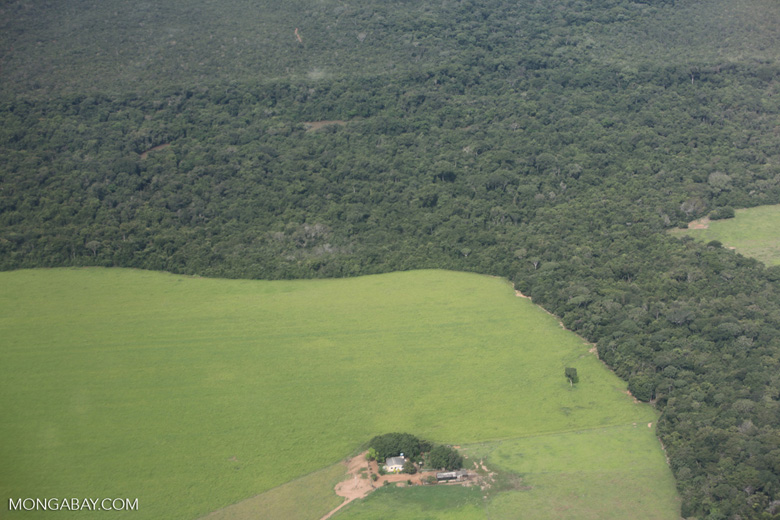 Amazon rainforest and cattle pasture [brazil_0504]