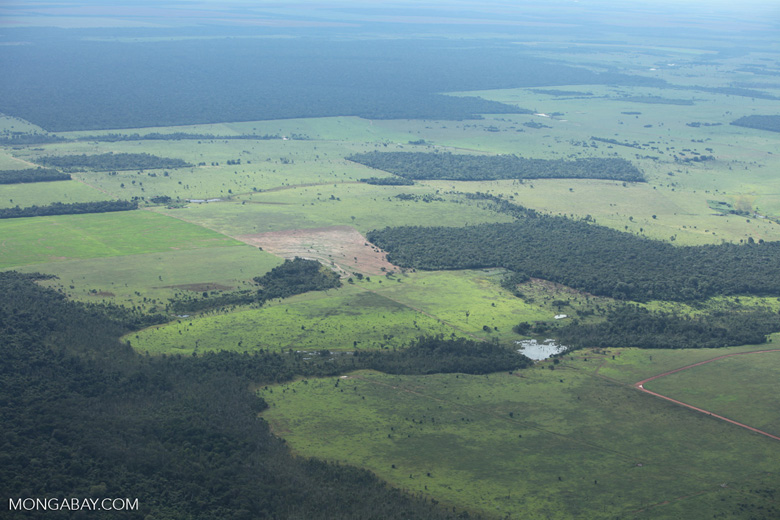 Patchwork of forest and pasture in the Brazilian Amazon