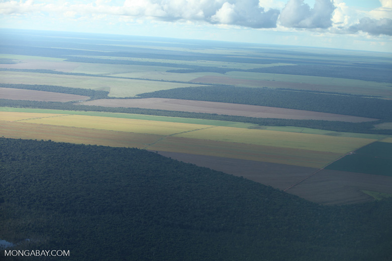 Patchwork of legal forest reserves, pasture, and soy farms in the Brazilian Amazon [brazil_0608]