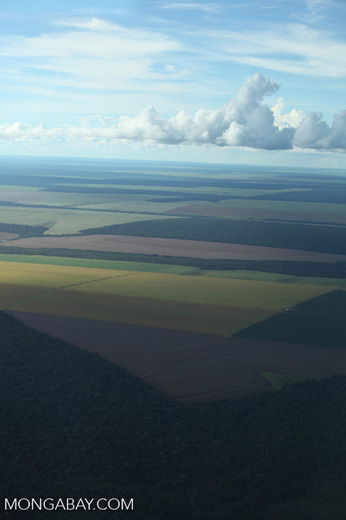 Patchwork of legal forest reserves, pasture, and soy farms in the Brazilian Amazon [brazil_0611]