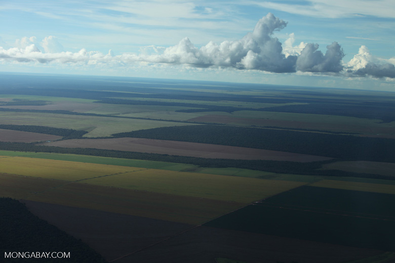 Patchwork of legal forest reserves, pasture, and soy farms in the Brazilian Amazon [brazil_0612]