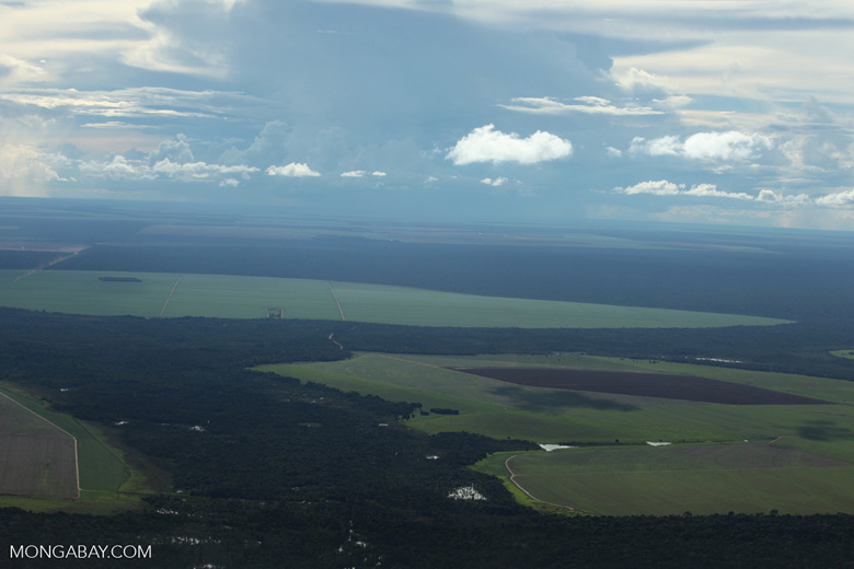 Patchwork of legal forest reserves, pasture, and soy farms in the Brazilian Amazon [brazil_0613]