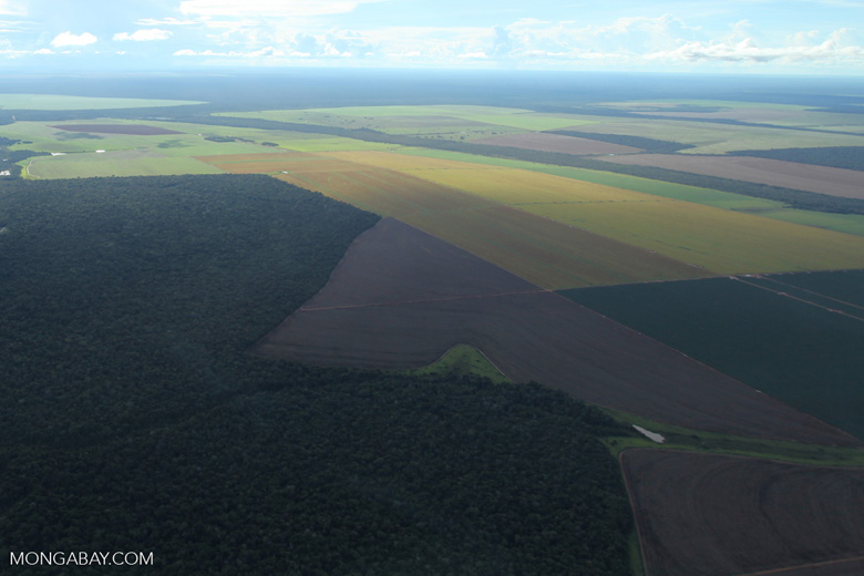 Patchwork of legal forest reserves, pasture, and soy farms in the Brazilian Amazon [brazil_0614]