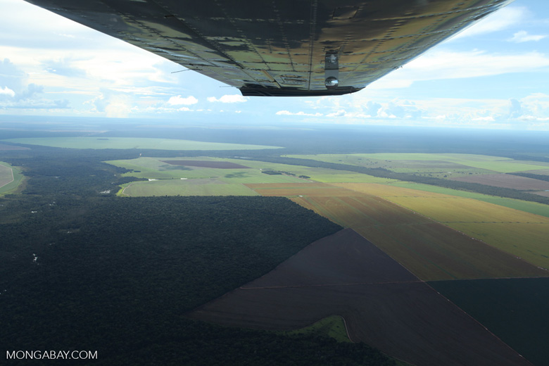 Patchwork of legal forest reserves, pasture, and soy farms in the Brazilian Amazon [brazil_0616]